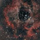 Rosette Nebula,                                MRPryor