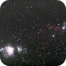 Orion widefield,                                Jim Medley