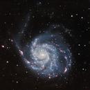 M101 in LHaRHaGB,                                TimothyTim