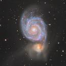 M51 Wide field,                                Albert van Duin