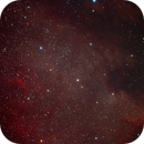North America Nebula (NGC 7.000),                                Manuel Huss