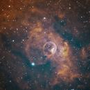 NGC 7635 - Bubble Nebula,                                John Butler