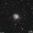 M101 Pinwheel Galaxy #5,                                Molly Wakeling