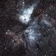 NGC 3372 - Carina great nebulae,                                Mathieu Bertholet