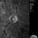 Copernicus,                                Wouter D'hoye