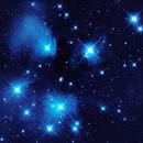 M45,                                Greg Polanski