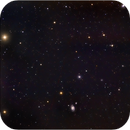 NGC3893, and The Miniature Spiral Galaxy NGC 3982 and Their Friends,                                Randal Healey