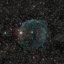 Sh2-308 The Dolphin Nebula,                                Chief