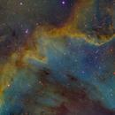 Cygnus Wall in SHO,                                Josh Woodward