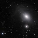 Fornax A - NGC 1316,                                Nicholas Jones