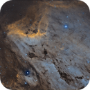 Nebulosa Pellicano IC5067,                                Emanuele Patassini