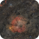 IC1396 - widefield,                                Almos Balasi