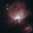 M42,                                David Quattlebaum