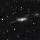 NGC 3448,                                Lorenzo Siciliano