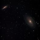 M 81, M 82, NGC 3077 - Bodes Galaxie, Zigarrengalaxie, Garland-Galaxie / Bode's Galaxy, Cigar Galaxy, Garland Galaxy,                                Markus Adamaszek
