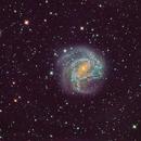 M83 by Moonlite,                                Malcolm Ellis