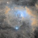 Bubble Nebula (NGC7635),                                Mark Tweedie