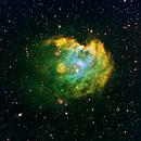 NGC 2175 Monkey Head Nebula,                                Richard O