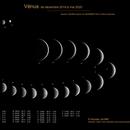 Vénus de décembre 2019 à mai 2020,                                Nicolas JAUME