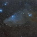 The Blue Horsehead Nebula Region - IC 4592 and Surroundings,                                Gabriel R. Santos...