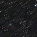 Comet C/2018 W2 (Africano),                                Molly Wakeling