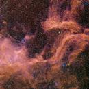Sh2 118 a large emission nebula in Cygnus,                                hbastro