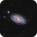 M109 A Classic Barred Spiral in Ursa Major,                                John Hayes