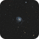 M101 - old RGB, new L,                                Roberto Botero