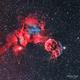 IC 443 - La méduse en HaOO,                                Séb GOZE