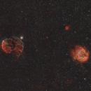 IC 443 Jellyfish and Monkey head,                                Rhett Herring