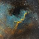 Cygnus Wall in SHO,                                Bradley David