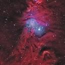 NGC2264 Cone Nebula and Christmas Tree Cluster,                                Graem Lourens