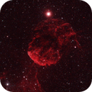Jelly Fish Nebula,                                Astroricker