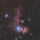 Horsehead Nebula and Flame Nebula,                                Francesco Ottonello
