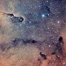 IC 1396 - Elephant's Trunk Nebula - Cropped,                                Ryan Fraser
