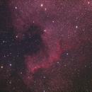 NGC7000 - North America Nebula,                                Phil Hosey