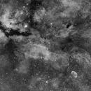 The Gamma Cygni Nebula and Crescent Nebula in H-Alpha,                                Marcel Nowaczyk