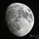 Moon,                                Michael Caller