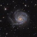 M101 - The PinWheel Galaxy,                                Tristan Campbell