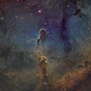 IC1396 and surroundings,                                Arun H.