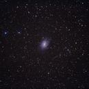 NGC 6744 Widefield,                                Don Pearce