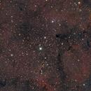 IC 1396A Elephant Trunk,                                Angelillo