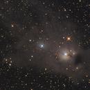 NGC5367 - Reflexion Nebula,                                Israel Mussi