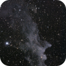 IC 2118, The Witch Head Nabula,                                Steven Bellavia