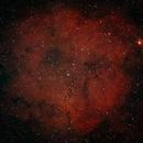 IC 1396,                                Michael