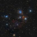 NGC 2170 - The Angel Nebula,                                Fabian Rodriguez Frustaglia
