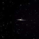 NGC4631,                                Daniele Viarani