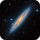 NGC 253 Sculptor Galaxy,                                chrislinyy