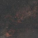 Sadr region in Cygnus,                                Philipp Weller