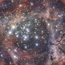 Il cuore di NGC 2237,                                Alessandro Speranza